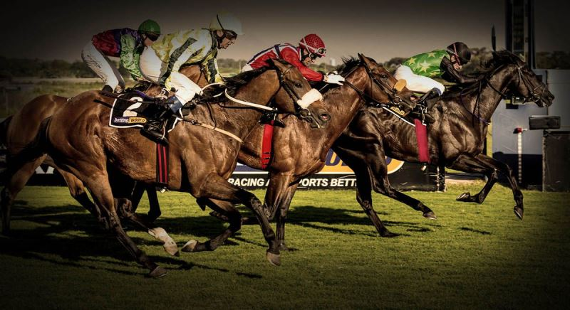 Horse Racing Tips | Sporting Post