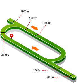 horse racing tracks south africa sporting post rh sportingpost co za 1600M Olympics Strategies for Running the 1600M