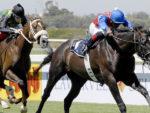 Jackson - Gr1 Investec Cape Derby 2012