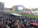 The crowd at Greyville on Saturday