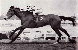 King's Pact winning the 1953 Champion Stakes