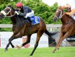 Athina wins the Gr3 Three Troikas Stakes at Turffontein 2014-02-08