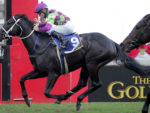 Kochka wins the Gr1 Premier's Champion Stakes at Greyville 13-07-27