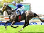 Majmu wins the Listed Ruffian Stakes at Turffontein 2014-03-08