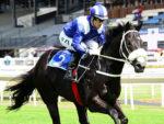 Banaadeer wins the Listed Storm Bird Stakes at Turffontein 2014-03-08