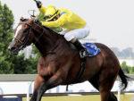 Yorker wins the Gr1 Horse Chestnut at Turffontein 2014-03-29