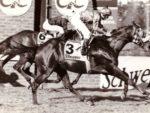 1994 Gr1 Schweppes Challenge - PAS DE QUOI - finish