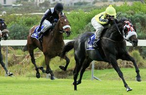 Power King wins the Gr3 Winter Guineas at Kenilworth on 14-05-04