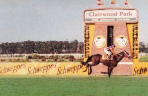 Clairwood - 1987 Gr1 Schweppes Natal Administrators Champions Challenge - MODEL MAN - finish2_compressed