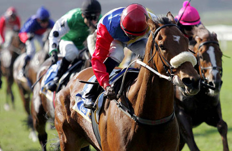 The consistent Midnight Run will go close if he takes to the sand in a tough race