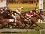 1995 Gr1 Cape Argus Guineas