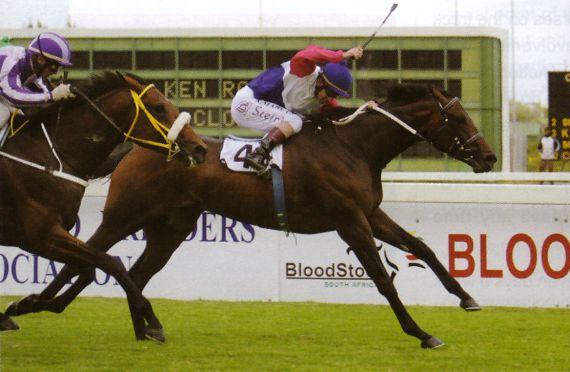 2007 Gr1 Bloodstock SA Cape Guineas
