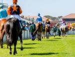 horses on parad