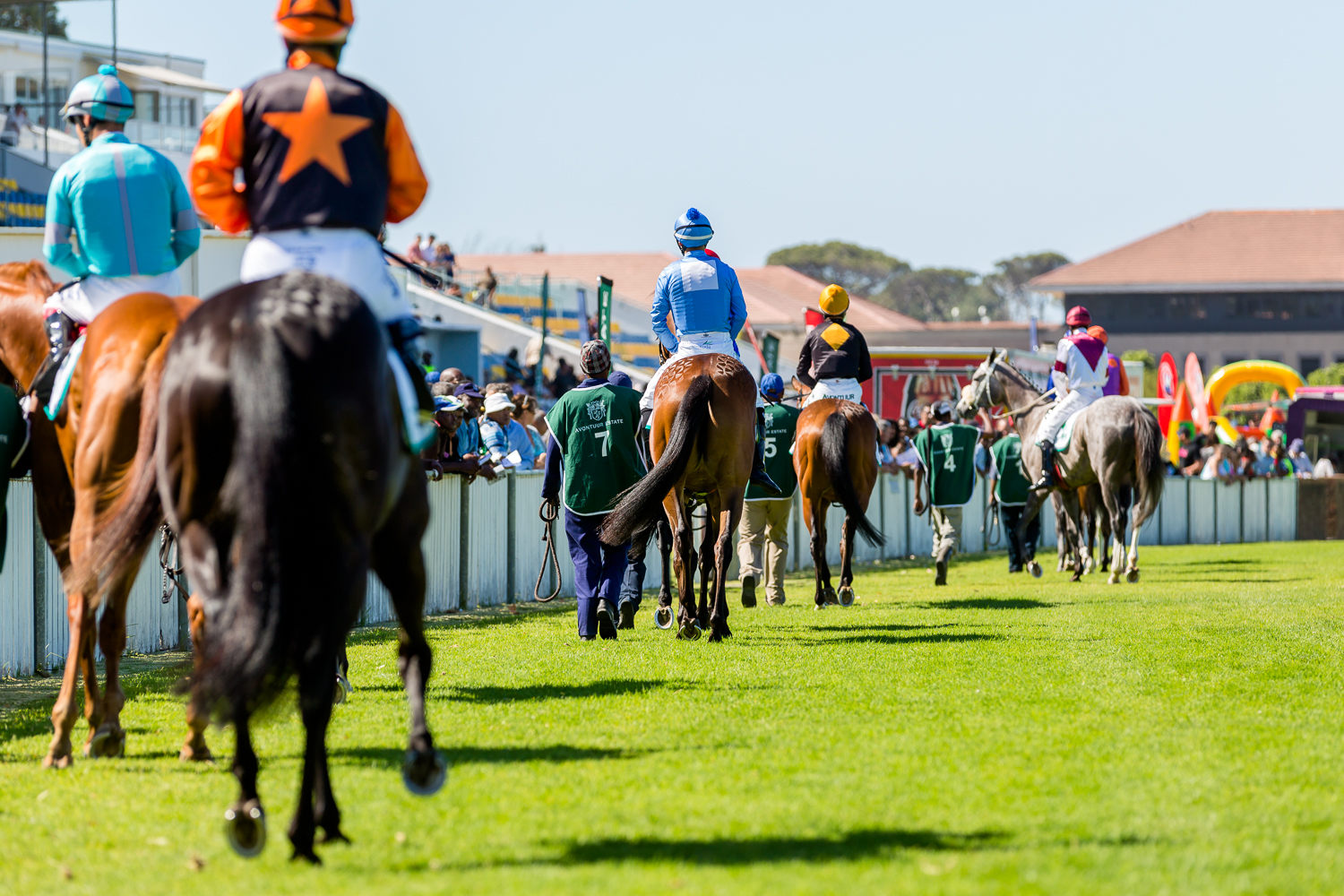 Lockdown - What About The Horse? - Sporting Post