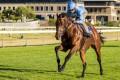 2015 J&B Met gallops - Legislate