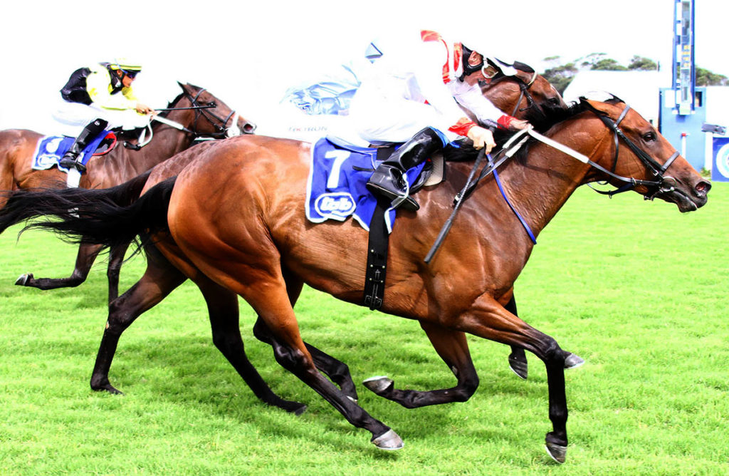 Reflective Image wins the Gr2 Sceptre Stakes at Kenilworth on 14-01-18
