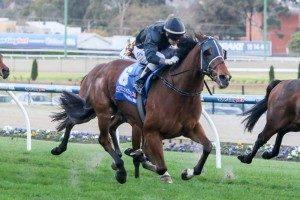 Classy galloper Mourinho