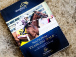 2015 National Yearling Sale Catalogue