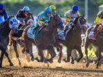 American Pharoah in the 2015 Belmont Stakes