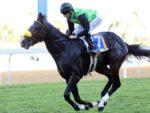 Rabada wins Gatecrasher Stakes