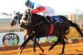 Lord Victorious wins Kimberley Nursery
