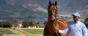 Duke Of Marmalade (credit: hamishNIVENPhotography)