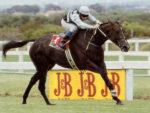 Empress Club winning the 1993 Gr1 J&B Met