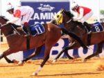 Horse racing cards tomorrow sporting life