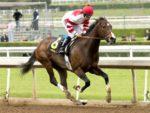 Songbird wins the 2016 Gr3 Santa Ysabel Stakes