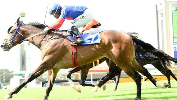 Flying Myth wins Storm Bird Stakes