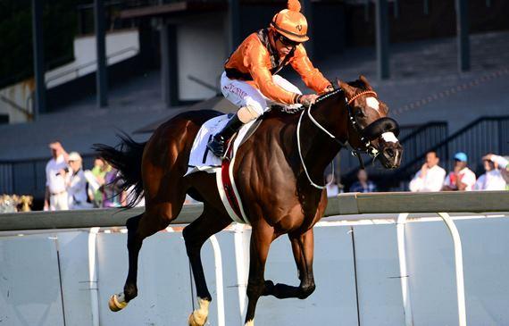 Abashiri wins SA Classic