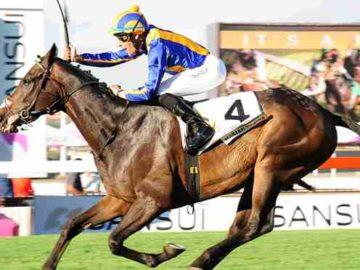 Sporting Post - Horse Racing, Horse Breeding, Sports Betting