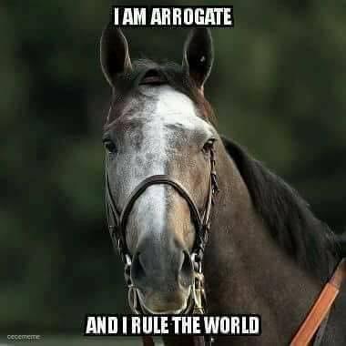 Arrogate