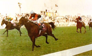 Castle Walk - 1988 Gr1 Game Gold Cup