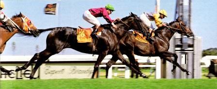 Sea Warrior wins the 1986 Richelieu Guineas