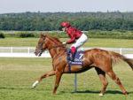 WINGS OF DESIRE (Frankie Dettori) - Pic Steven Cargill / Racingfotos.com