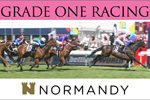 Normandy Racing Fractional Ownership